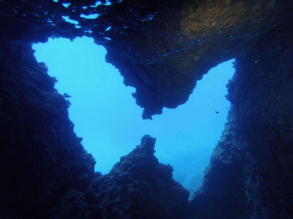 Certified Divers Scuba Diving